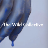 The Wild Collective