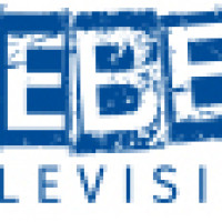 Rebel Television & Media LTD