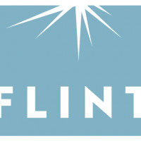 FLINT TELEVISION